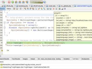 netbeans_debug_xdebug_action